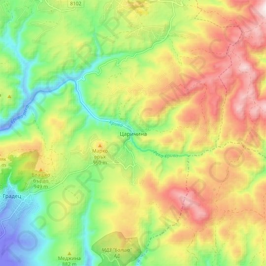 Tsarichina topographic map, relief map, elevations map